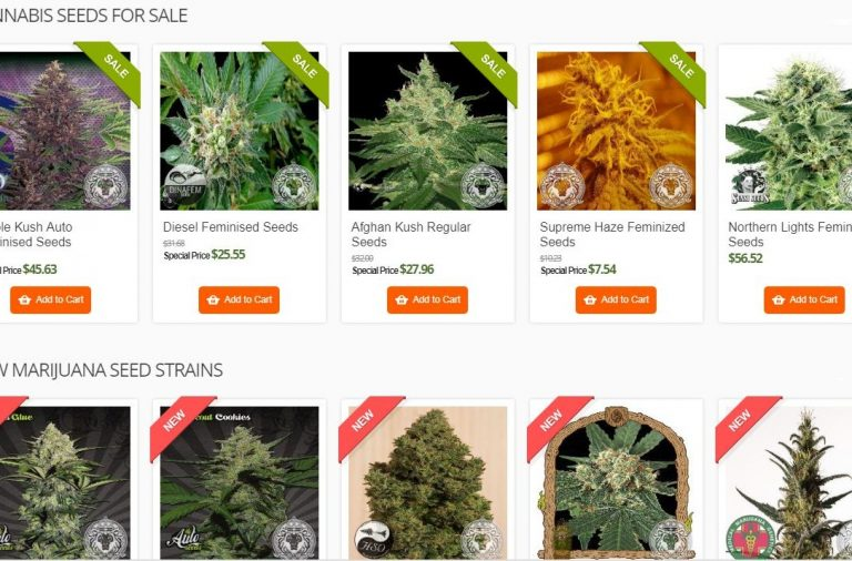 Cannabis Seed Sourcing Challenges